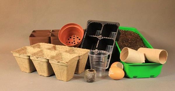 Подготовка грунта и ёмкостей