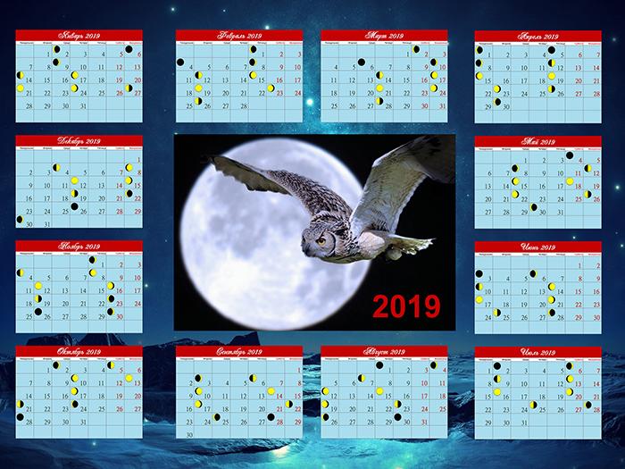 Благоприятные и неблагоприятные дни для посева семян огурцов в 2019 году по Лунному календарю
