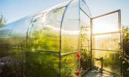 Выращивание огурцов в теплице из поликарбоната от а до я Видео