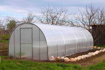 Подготовка почвы под посадку огурцов